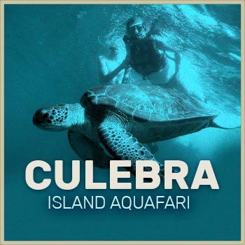 Snorkeling in Culebra Day Trip icon