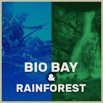 El Yunque and Bio Bay tour icon