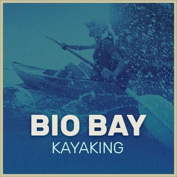 Fajardo Bio Bay Kayak Tour icon